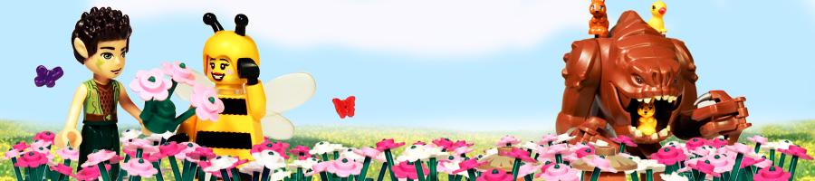 bannerback_spring.jpg