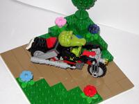 gallery_15845_233_36584.jpg
