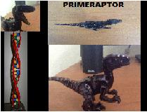 PRIMERAPTOR.png