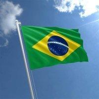 brazilianbrickbuilder