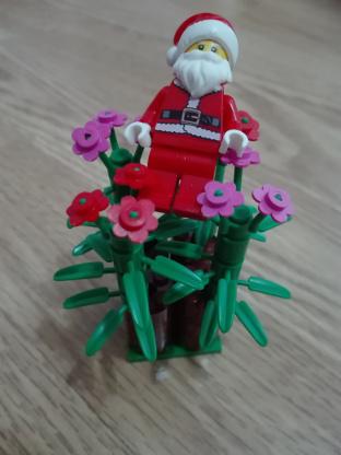 Christmas_Tree.jpg.ef216dfeccf9148b097b068f4a2c58ed.jpg