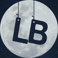LunarBricksTeam