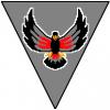 Blackhawk STX